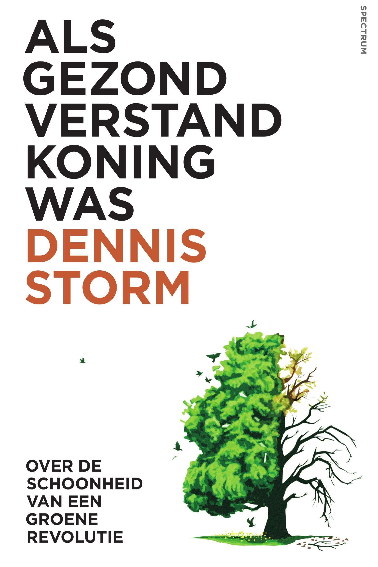 Dennis storm